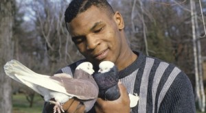 Mike Tyson and his pigeons
